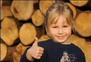 Stufa a legna: riscaldarsi con energia rinnovabile, riducendo le emissioni di Co2